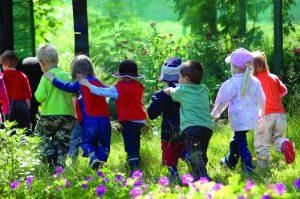 Kids Forest